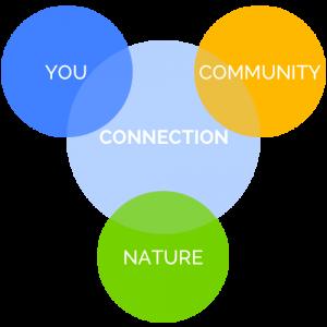 Connection Schaubild